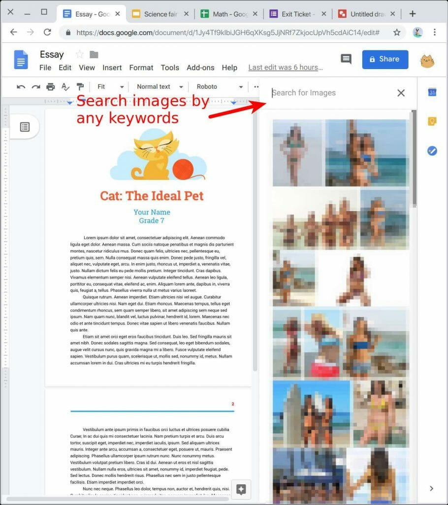 Image searching in Google Docs by any keywords, say girls in bikini