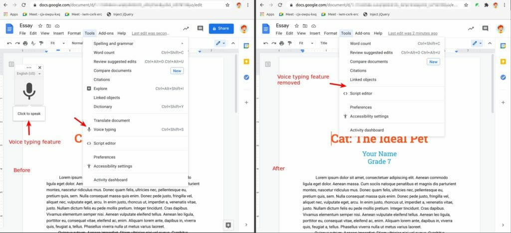 Safe Doc removes the Voice typing feature in Google Docs